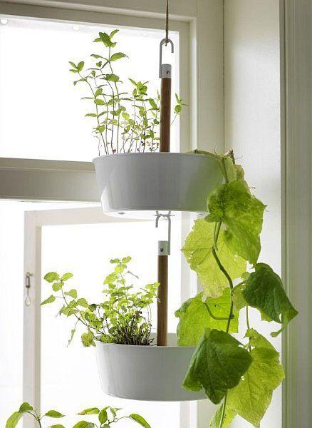 Zielone Balkony Ikea Ikea Plants Wall Planters Indoor Hanging Planters