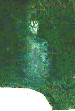 """Creekboy"" is the best paranormal picture I've ever captured. Is it a ghost? Watch video & read more about it: http://www.unexplainedfiles.com/2001/03/field-reports-from-raymond-mississippi.html"