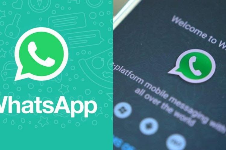Download Whatsapp Plus Mod Apk Terbaru 2018 Clone V7 51 di