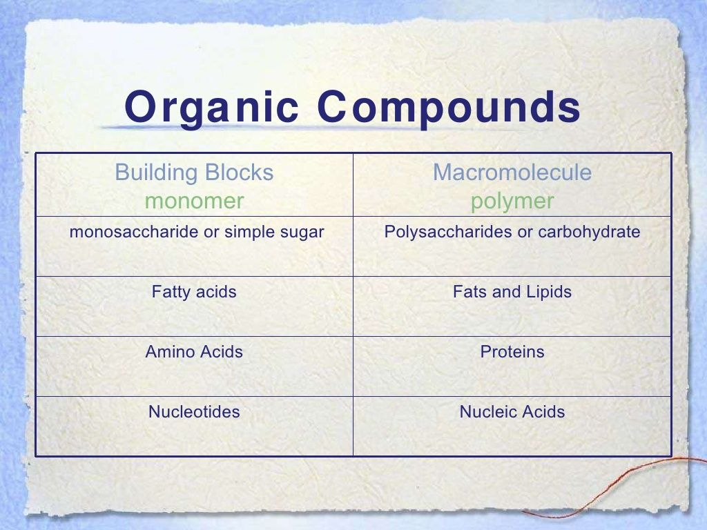 Updated Learning Amino Acids Are The Building Blocks Of