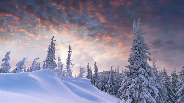 Winter And Snow Wallpaper Free Download Winter Wallpaper Winter Wallpaper Hd Snow Scenes