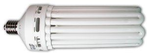 Hydrofarm FLC200D 200W Compact Fluorescent Bulb - Daylight by Hydrofarm. $55.69. 200 watt bulb; rated 10,000 hours of life. No heat means more light energy right next to your plants.. Full spectrum ensures proper development and maximum flowering.. Use horizontal or vertical- inside or outside the plant canopy.. For indoor gardening all year. Garden indoors year 'round. Grow flowers, herbs, and much more!  MORE PRODUCTIVITY: No heat means more light energy right ...