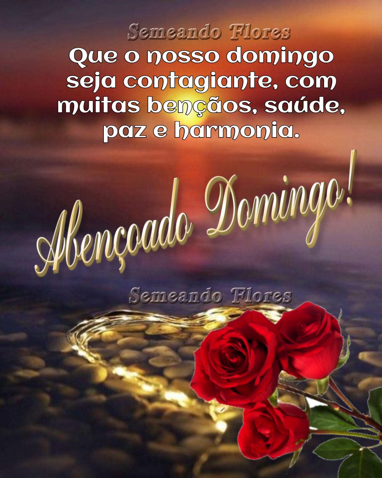 Pin De Denite Brasil Em Boa Noite Amor Mensagens De Bom Dia Meu