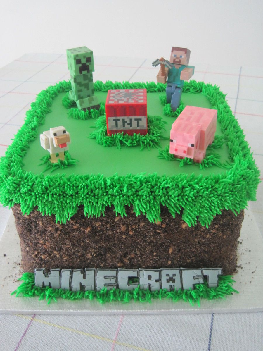 Minecraft Grass Block Birthday Cake For My Nephew Oreo And Teddy