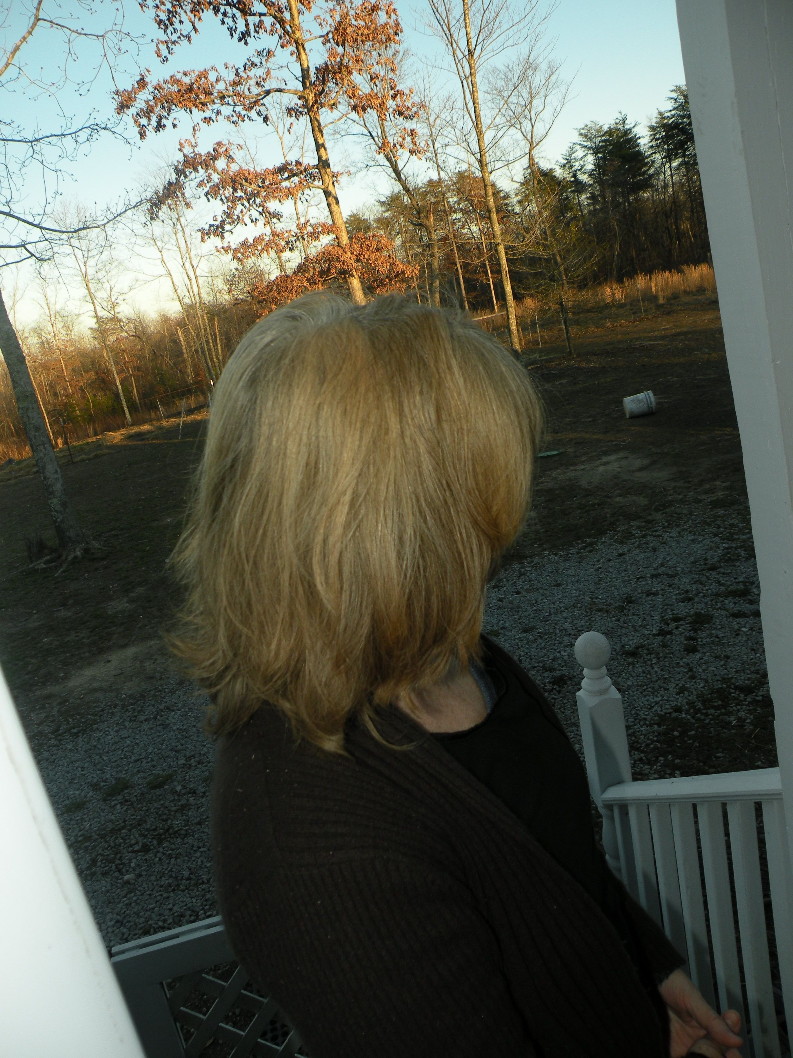 my Cassia Henna Blonde dyed hair ~safe alternative to hair dyes ...