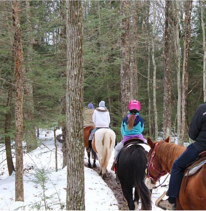 Photo of Explore The Snowy Pocono Mountains On Horseback On This Unique Winter Tour In Pennsylvania