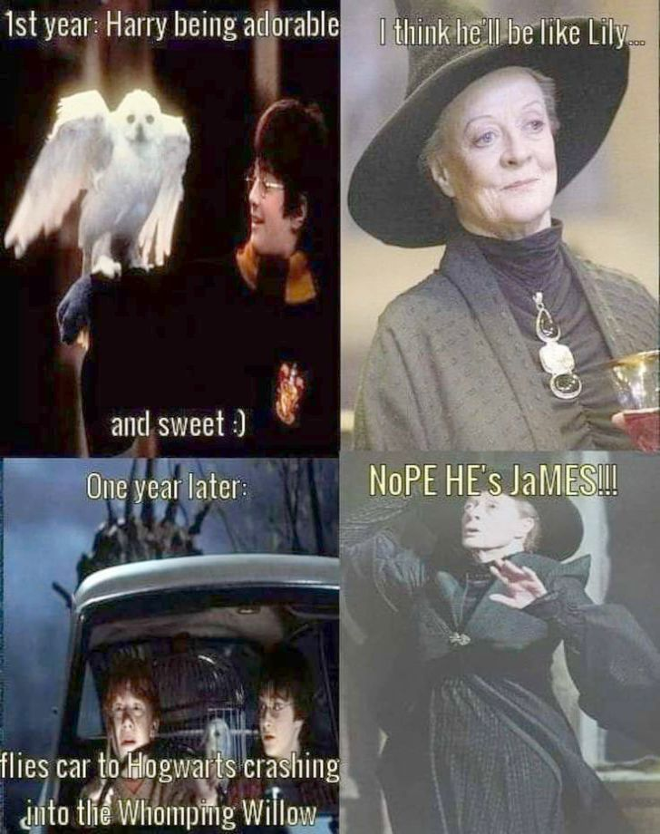 Harry Potter Characters Movie 1 Harry Potter Spells Movie Case Harry Potter Movies Peeves Long Har Harry Potter Jokes Harry Potter Puns Harry Potter Universal