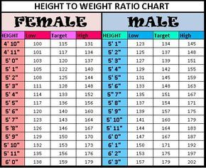 Height To Weight Chart  Weight Charts Height Weight Charts And