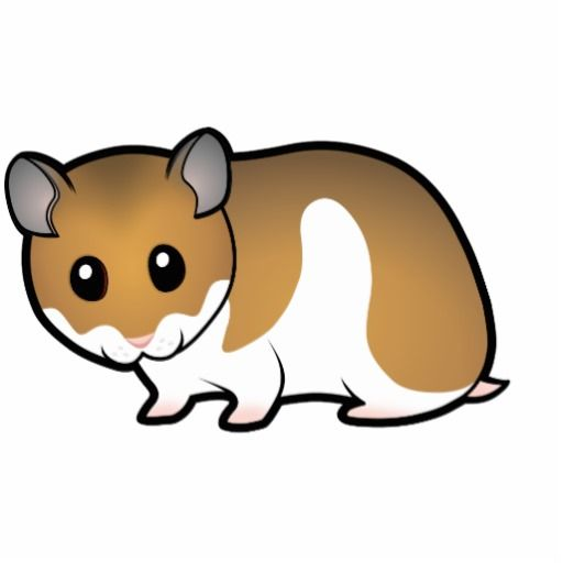 Cute Hamster Cartoon Cartoon syrian hamster photo | Art ... Cute Hamster Cartoon