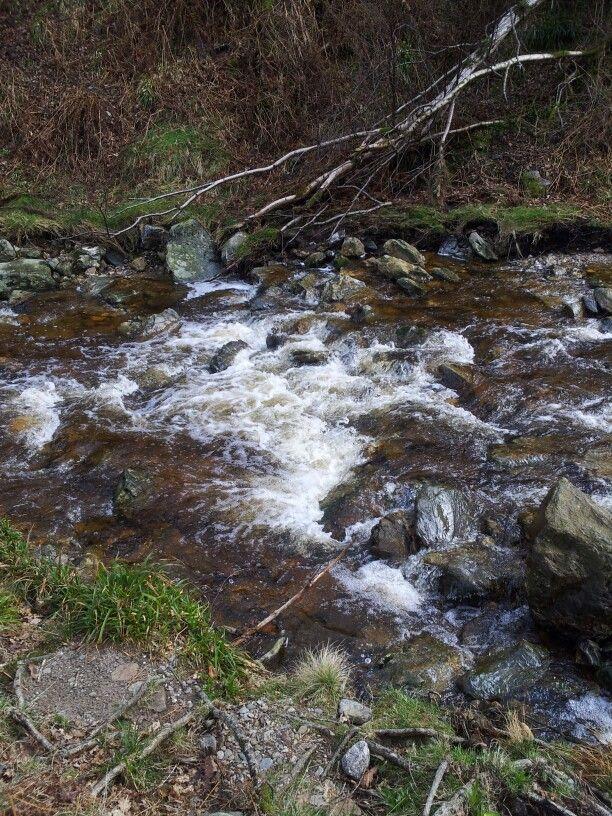 Powerscourt stream