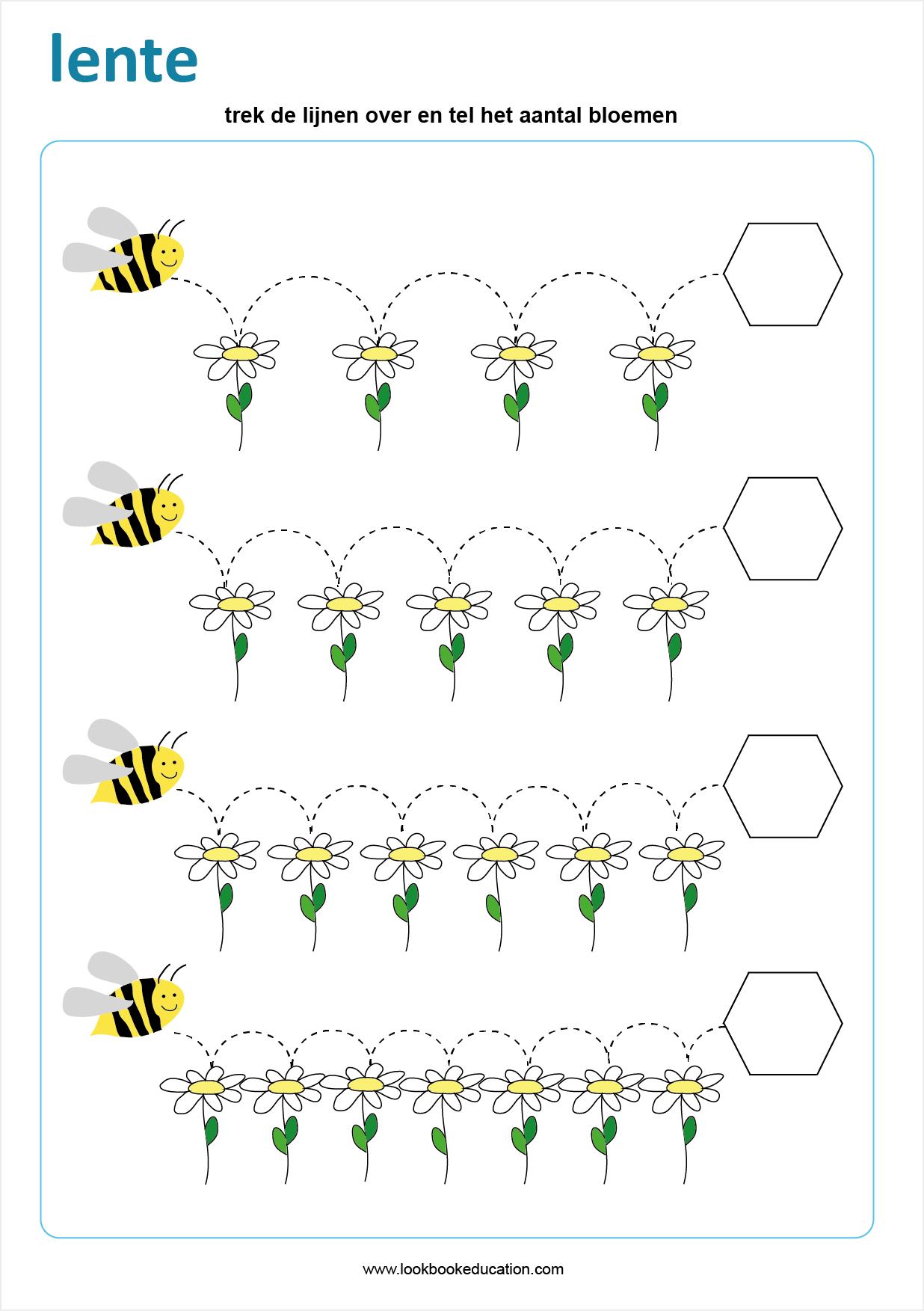 Pin Op Insectes