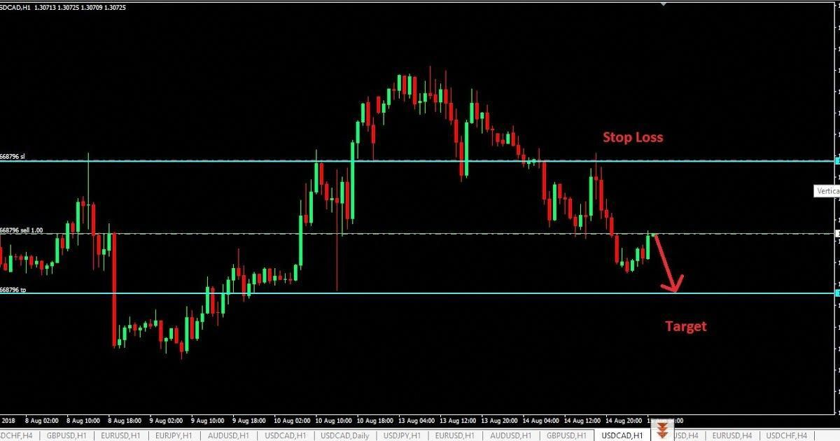 Trading Signals Currency Trading For Dummies Trading