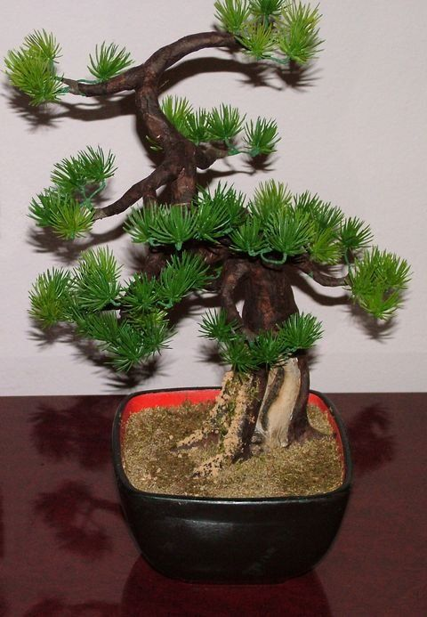How To Make An Artificial Bonsai Tree