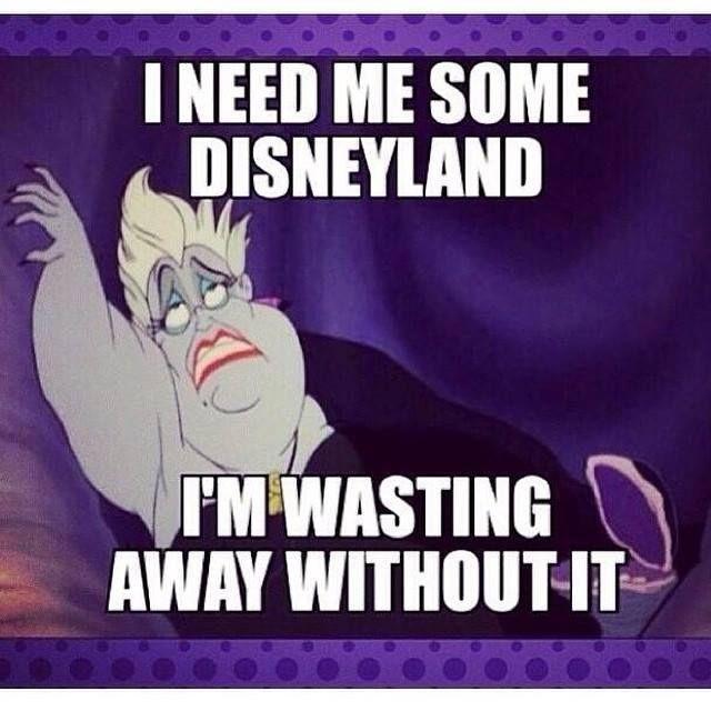 Image result for disneyland memes