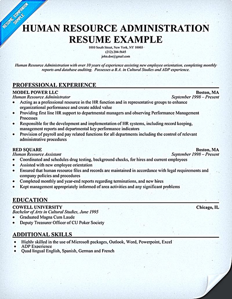 Human Resources Resume Human Resources Resume That Represents Your