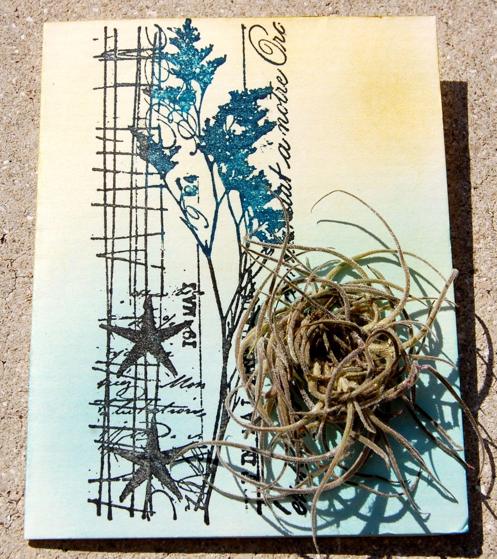 Sea collage card