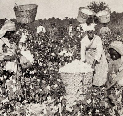 Image result for mothers working on cotton plantations