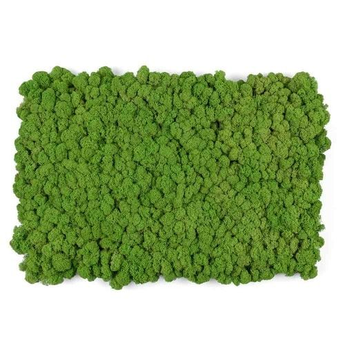 Cafe Jardin Decorative Mat: Living Wall Moss Tile Green 15 X 23