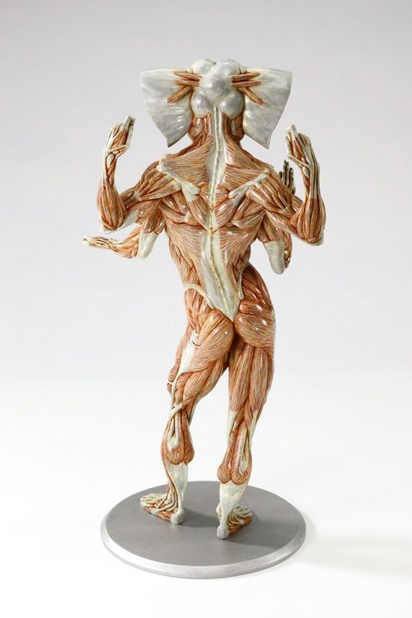 Whimsical Anatomy Sculptures of Masao Kinoshita | Anatomy sculpture ...