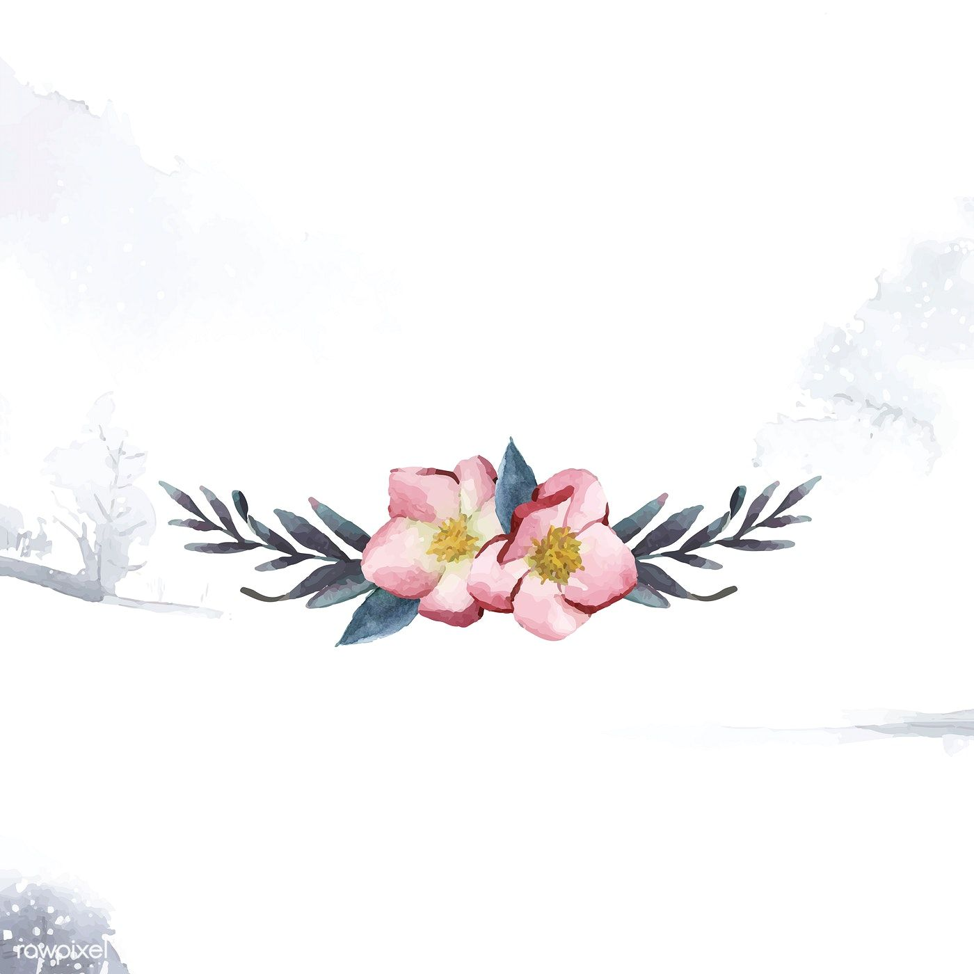 Hellebore flowers painted by watercolor vector free