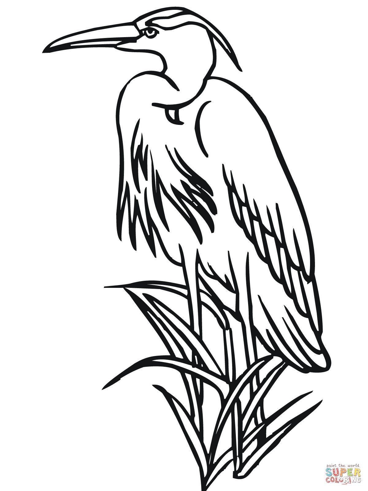 Heron In A Reed Coloring Page Jpg 1200 1600 Heron Art Watercolour Texture Background Heron