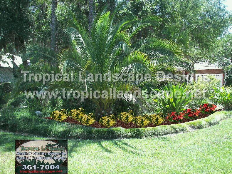 Small Yard Tropical Landscape | Tropical Landscaping Designs of ...