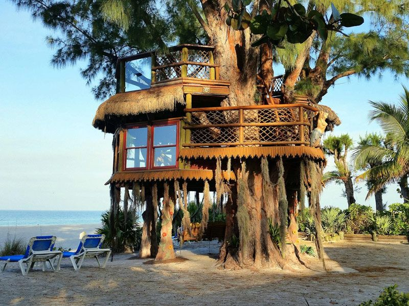 14 Treehouse Rentals In Florida That Will Make You Feel Like A Kid Again Florida Travel Visit Florida Florida Vacation Spots