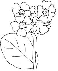 Znalezione Obrazy Dla Zapytania Wiosenne Kwiaty Szablony Diy