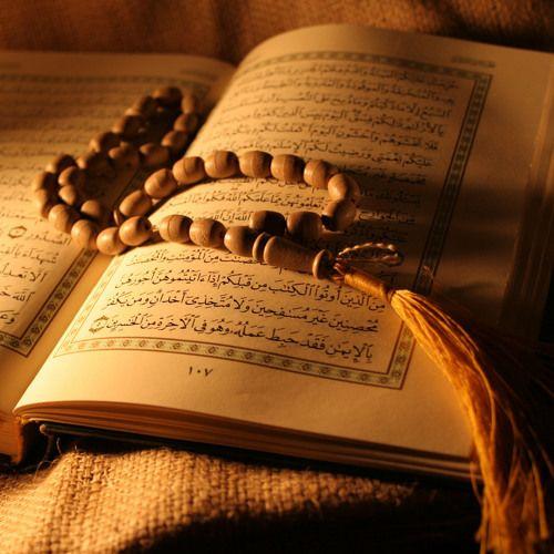 سورة إبراهيم القارىء إسماعيل لونت Quran How To Memorize Things Complete Quran