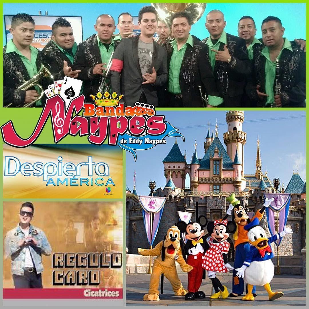 Mañana Viernes La Banda De Eddy Naypes Tocando Con Regulo Caro en Despierta America  Desde Disneyland Apartir de Las 3:am @rosadaza #gruvgear @drstrings  #drstrings #eddynaypes #gruvartist @gruvgear #fretwrap @botaselgeneral #EstiloUnicoElGeneral #BotasElGeneral #ElGeneralBoots tienda oficial www.ElGeneralBoots.com  @despiertamerica @regulocaro @regulocarooficial @disneyland by eddynaypes