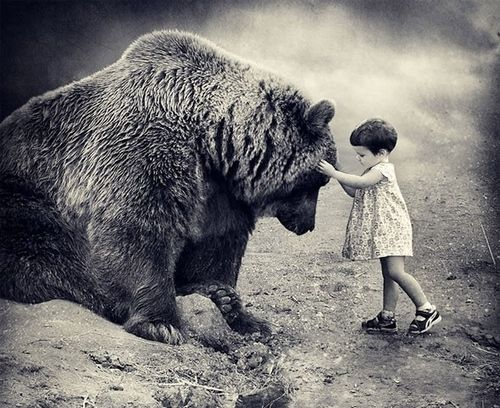 a child of bear island