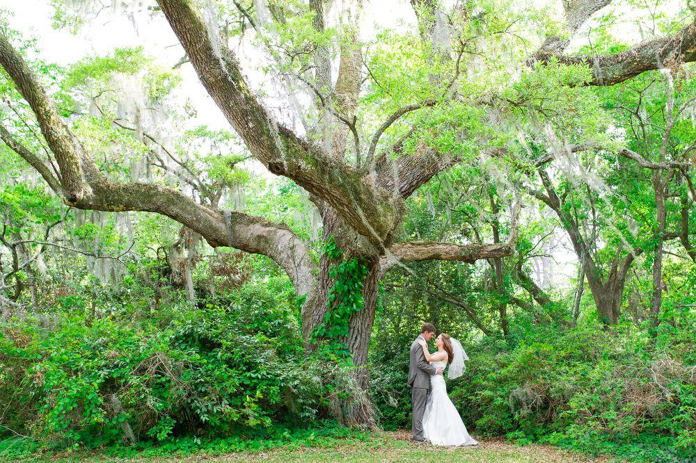 Brookgreen Gardens Wedding In Murrells Inlet, SC. Mint, Coral, And  Goldenrod Wedding