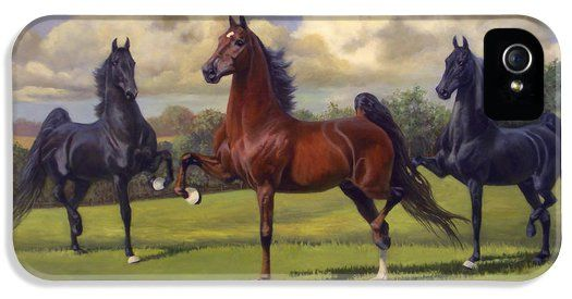 American Saddlebred Stallions iPhone 5 Case / iPhone 5 Cover for Sale by Jeanne Newton Schoborg