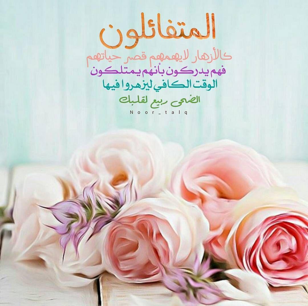 تذكير صلاة الضحى ربيع قلبك Rose Flowers Islamic Quotes