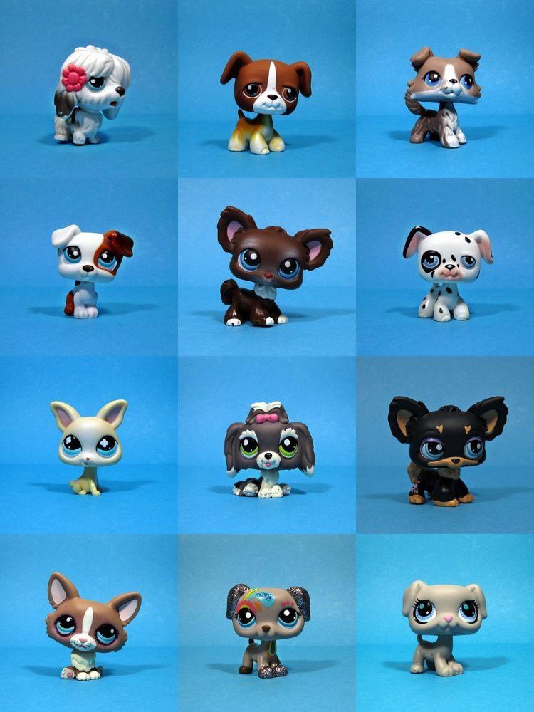 Littlest Pet Shop Animal Figures Lot Of 3 Puppy Dogs Boxer Great Dane Dalmatian Ebay Lps Littlest Pet Shop Littlest Pet Shop Little Pet Shop