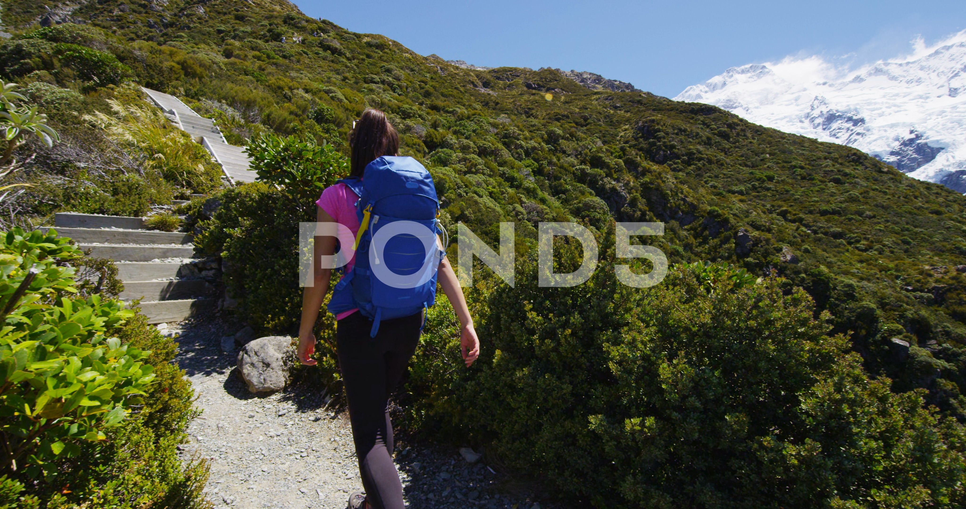 Hiking Woman In New Zealand Mount Cook Nature Mountain Landscape Stock Footage Mount Cook Zealand Hikin Hiking Women Business Card Template Design New Zealand