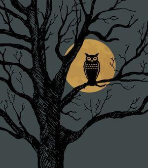 Google Image Result for http://accomplishedyounglady.com/wp-content/uploads/2012/03/Night-Owl1.jpg