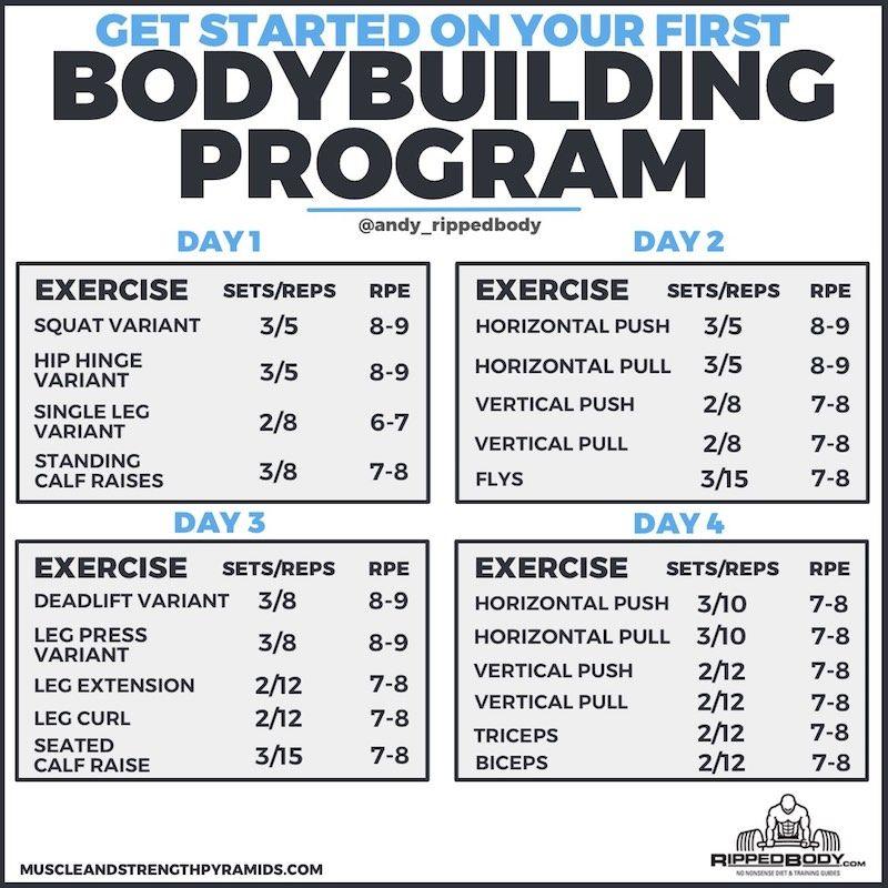 The Novice Bodybuilding Program Rippedbody Com Bodybuilding Workout Plan Workout Plan For Beginners Bodybuilding Program