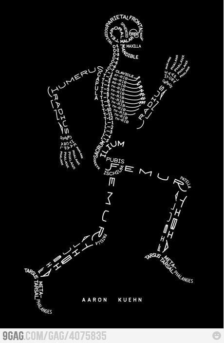 anatomy | medicina | Pinterest | Anatomía, Medicina y Fisioterapia