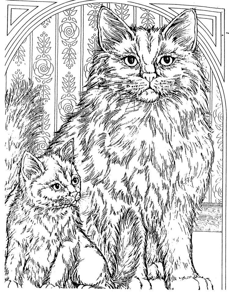 Katter http://www.barbsgalaxy.us/ColoringPages/ColoringPages/pKitties2.jpg