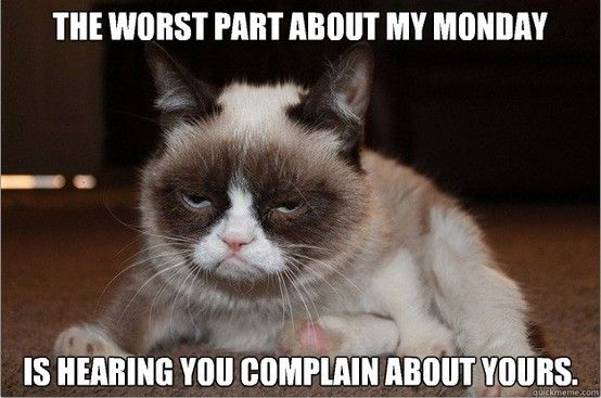 Pin By Alisa Berry Designs On I Love Grumpy Cat Grumpy Cat Quotes Grumpy Cat Meme Grumpy Cat Humor