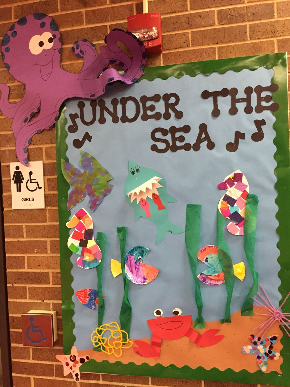 A Bulletin Board For Our Week On Oceans For The Letter O This - 5 different oceans