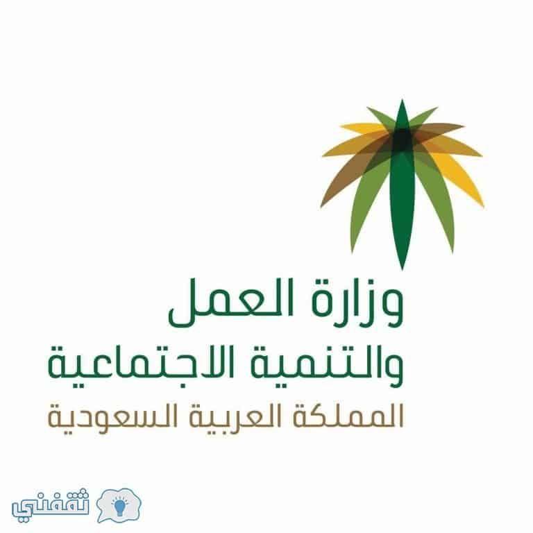 استعلام عن المقطوعة بالسجل ربيع الثاني الآن ورابط تحديث بيانات الضمان الاجتماعي الرسمي Saudi Arabia Marketing Labour Market