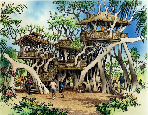 How Wonderful Would This Be A Treehouse In A Banyan Tree Yes - Contemporary banyon treehouse california