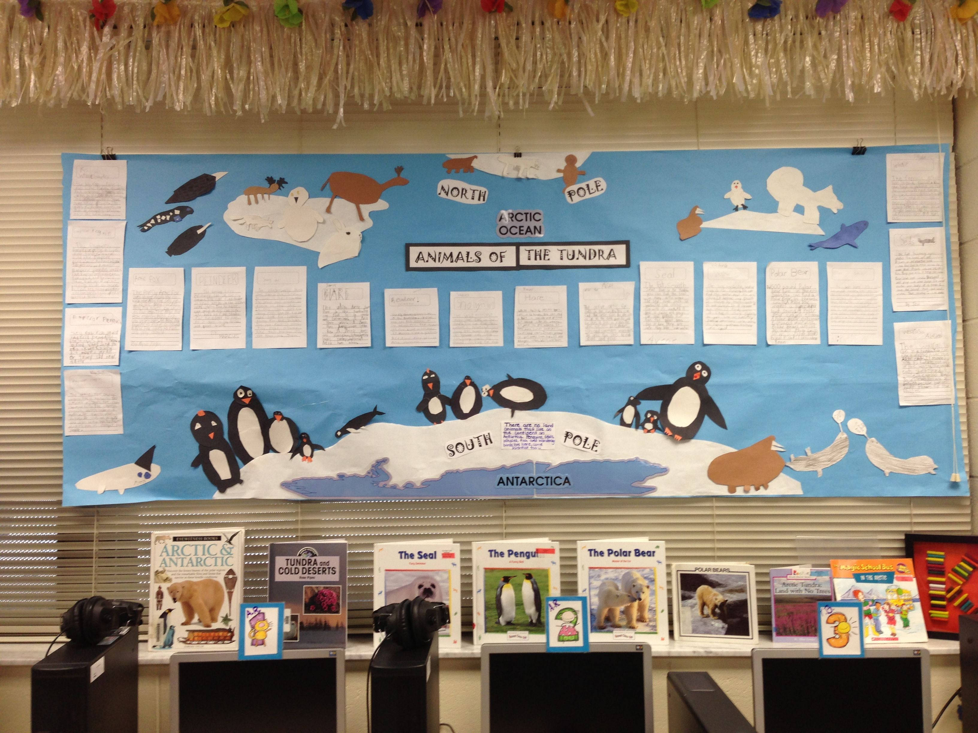 Animals Of The Tundra Bulletin Board