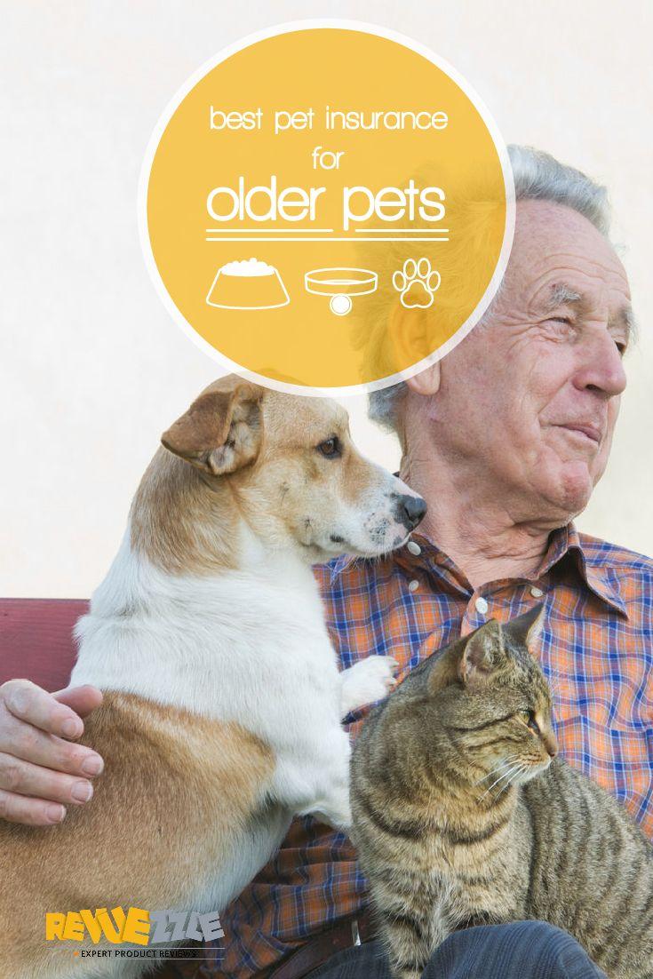 Best Pet Insurance For Older Pets Best Pet Insurance Pet Insurance Cheap Pet Insurance