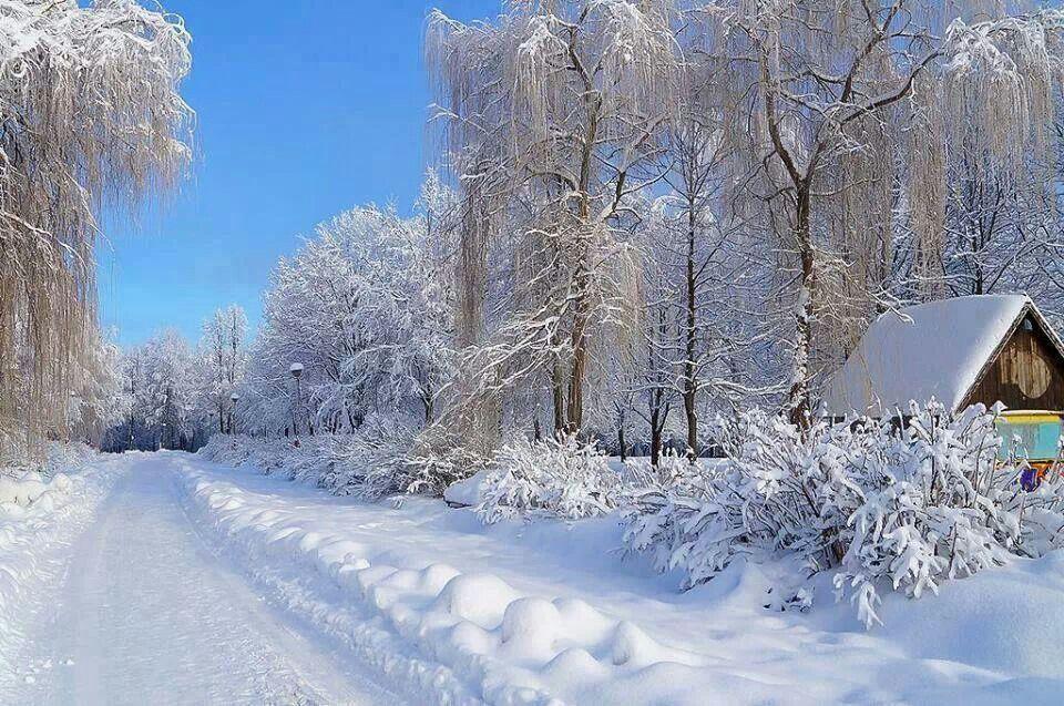 Winter Scene In Bryansk Russia Via Amazing Photos Around The
