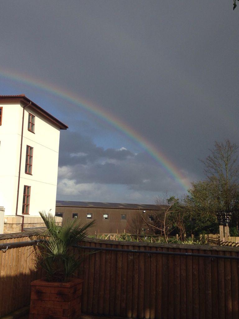 Double rainbow Xx @chessintonzoo