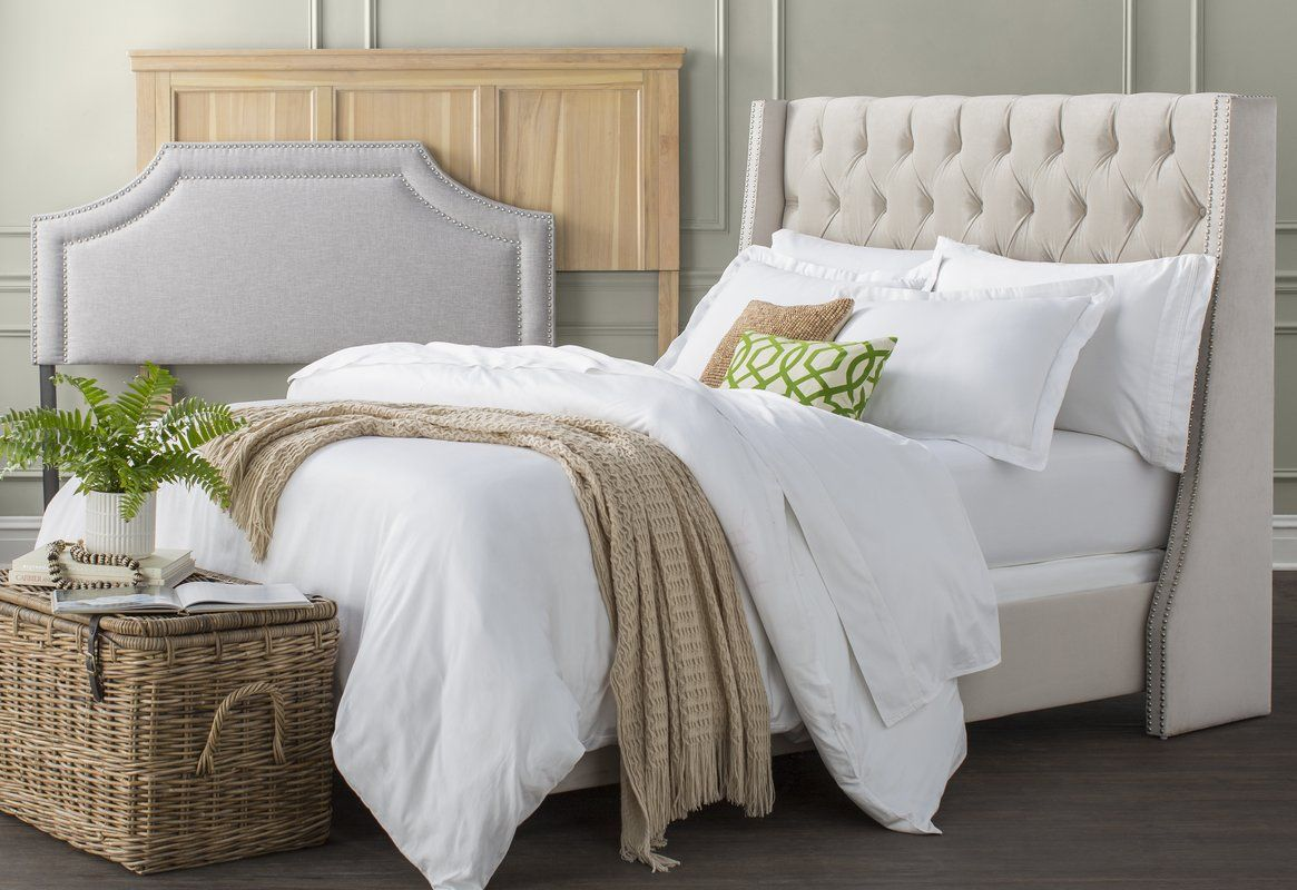 Beesley Upholstered Panel Bed & Reviews Birch Lane