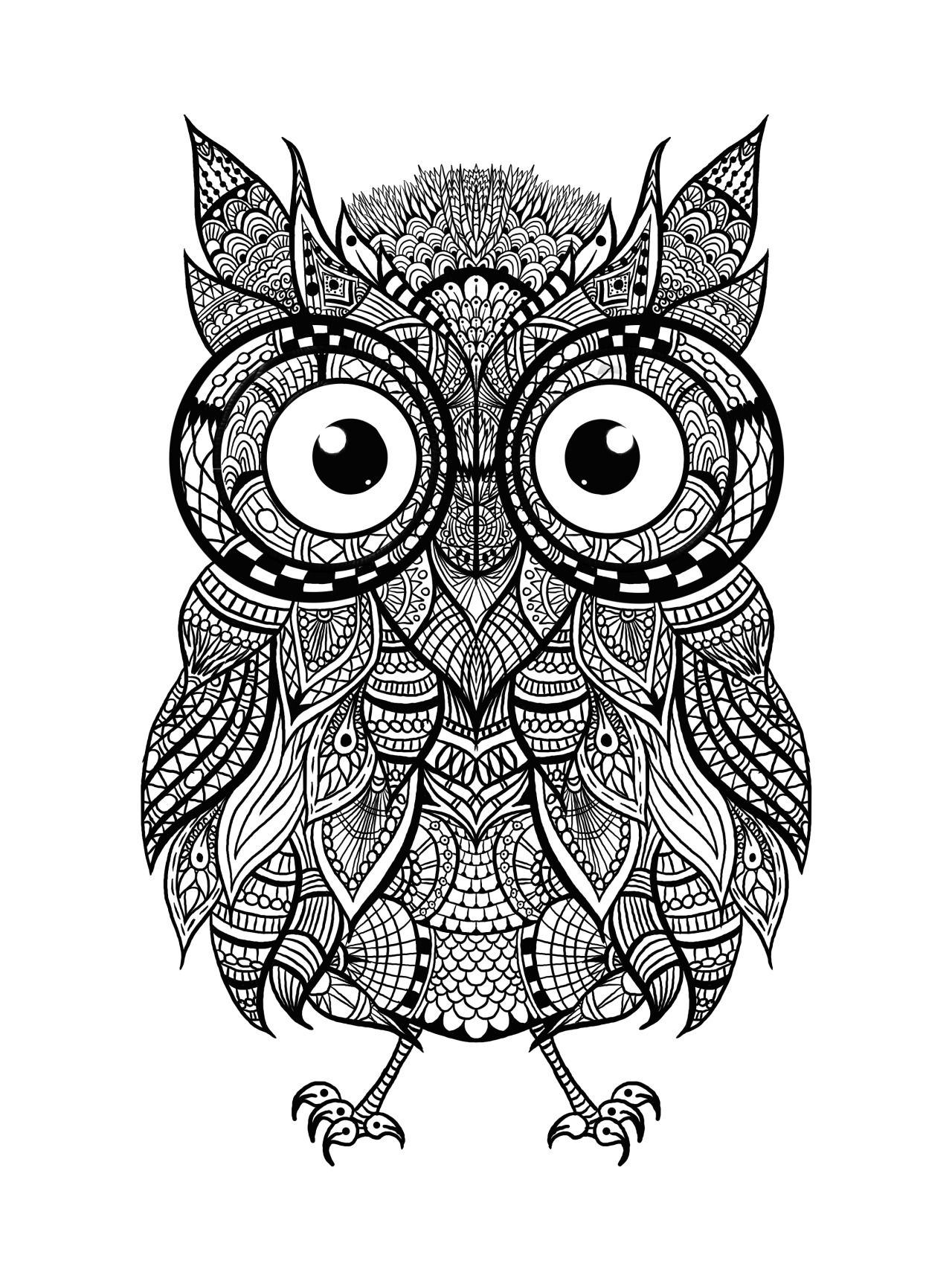 Check Out This Awesome Intricate Owl For Some Adult ColoringThis Image
